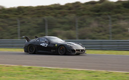 Ferrari tävlings- dagar Arkivbilder