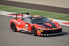 Ferrari utmaning Shell Cup 2015 på Monza Royaltyfri Bild