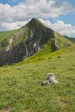 Ferratina del Berro, Sibillini Mountains. On location during summer in Marche, Italy. This is the mountain Ferratina del Berro, a hike into the Valley of Panic stock photos