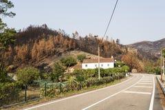 Ferreira fa Zezere Forest Fires immagine stock