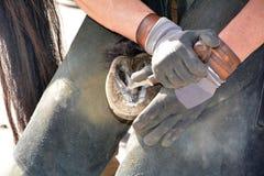 Ferreiro, ou farrier equino, Fotos de Stock