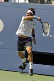 Ferrer David (ESP) på US Open 2013 (18) Arkivfoton
