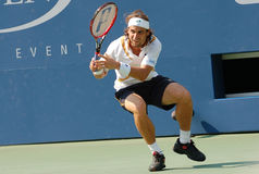 Ferrer David Spanish Star (12) Stock Images