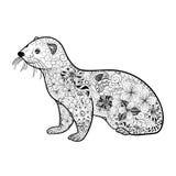 Ferret doodle Stock Image