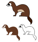 Ferret illustration Stock Photos