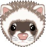 Ferret Vector clip-art Stock Images