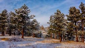 Ferri da stiri di Boulder in neve Immagine Stock