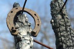 Ferri di cavallo arrugginiti su un palo di legno bruciato - scena rustica in uno stile country Fotografia Stock