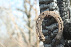 Ferri di cavallo arrugginiti su un palo di legno bruciato - scena rustica in uno stile country immagine stock