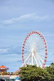 Ferri wheel,  Chicago Navy Pier. Chicago Navy Pier ferri wheel beside Michigan Lake, Chicago city, Illinois, United States Stock Photos