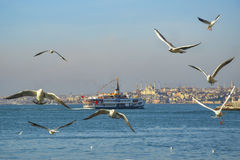 Ferries in Istanbul. Istanbul, Turkey - February 2, 2014: Icon is one of the ferries in Istanbul Stock Image