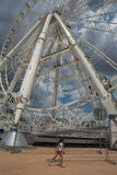 ferris巨大的轮子 库存图片
