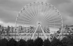 ferris巴黎轮子 免版税图库摄影
