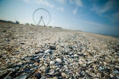 Ferris koło na plaży Fotografia Stock