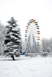 Ferris wheel. In winter park Royalty Free Stock Photo
