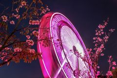 Ferris Wheel Stockfotografie