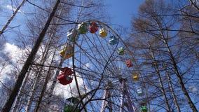 Ferris Wheel Alberi senza fogli fotografie stock