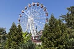 Ferris wheel in amusement park `Metro Park` resort town of Adler, Sochi Stock Photo