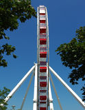 Ferris Wheel At Navy Pier Chicago, IL Stock Photography