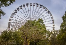 Ferris wheel in atraction park. Ferris wheel in attraction park with green trees in foreground Royalty Free Stock Image