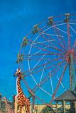 Ferris Wheel au parc de West End avec la girafe Image libre de droits