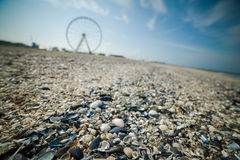 Ferris Wheel on a beach Stock Photography