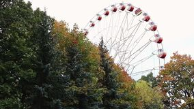 Ferris wheel behind the autumn trees in the park. Yellow leaves in the end of summer stock footage