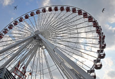 Ferris wheel with bird and plane. Bird and plane above Ferris wheel at Navy Pier Royalty Free Stock Photos