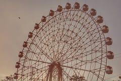 Ferris wheel and bird stock photos