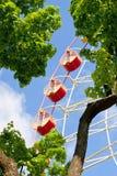 Ferris wheel carousel Stock Photos