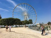 Ferris wheel in central Paris, seen from Tuileries gardens. Stock Images
