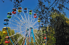 Ferris wheel with colored cabins in the park Stock Images