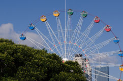Ferris Wheel the Dalian Xinghai park. Royalty Free Stock Photo