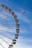 Ferris wheel in the deep blue sky with a seagull beside Stock Image