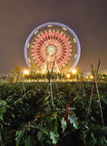 Ferris Wheel and Farmland. The glamorous night of Ferris Wheel and Farmland in Fengling  children's park of Nanning,Guangxi,China Royalty Free Stock Photography