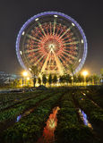 Ferris Wheel and Farmland. The glamorous night of Ferris Wheel and Farmland in Fengling  childrens park of Nanning,Guangxi,China Royalty Free Stock Photo