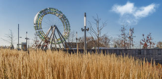 Ferris wheel with herbage Stock Photography