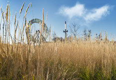 Ferris wheel with herbage Royalty Free Stock Photography