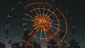 Ferris Wheel Lights en la noche y las palmeras almacen de metraje de vídeo