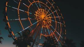 Ferris Wheel Lights en la noche y las palmeras metrajes