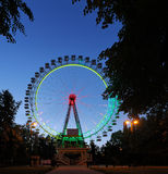 Ferris wheel with multicolored illumination with dark trees in t Royalty Free Stock Photography