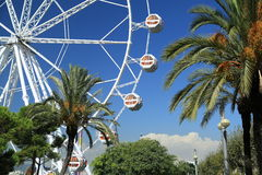 Ferris Wheel Oude havenhaven Vell, Barcelona, Spanje Royalty-vrije Stock Foto's