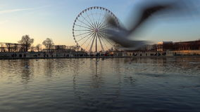 The ferris wheel in Paris, France stock footage