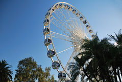 Ferris-wheel in Perth, Australia. Large white Ferris-wheel in the City of Perth in Western Australia Royalty Free Stock Photography