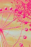 Ferris wheel duotone effect. Ferris wheel with ping and orange duo-tone effect Royalty Free Stock Photo