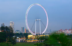 Ferris Wheel `Singapore Flyer` in the dusk time. Singapore City. Royalty Free Stock Images