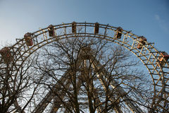 Ferris wheel and a tree on a sunny day at Vienna, Austria Stock Photos