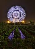 Ferris Wheel und Ackerland Lizenzfreie Stockfotos