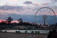 ferrisparis hjul Roue de Paris Sikt från den Tuileries trädgården Solnedgång i Le jardin des Tuileries Royaltyfri Fotografi