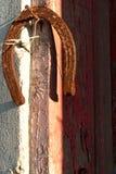 Ferro di cavallo che appende sul chiodo Rusted Immagini Stock